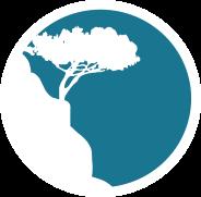 Le circle des partenaires du Golfe de Saint Tropez