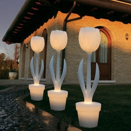 Tulipe XL lumineuse, My Your